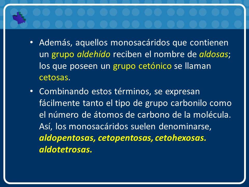 Además, aquellos monosacáridos que contienen un grupo aldehído reciben el nombre de aldosas; los que poseen un grupo cetónico se llaman cetosas.