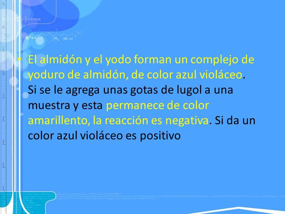 El almidón y el yodo forman un complejo de yoduro de almidón, de color azul violáceo.