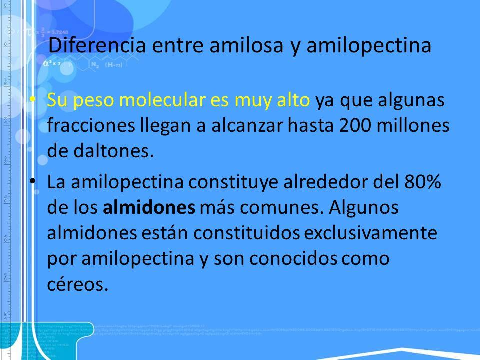Diferencia entre amilosa y amilopectina