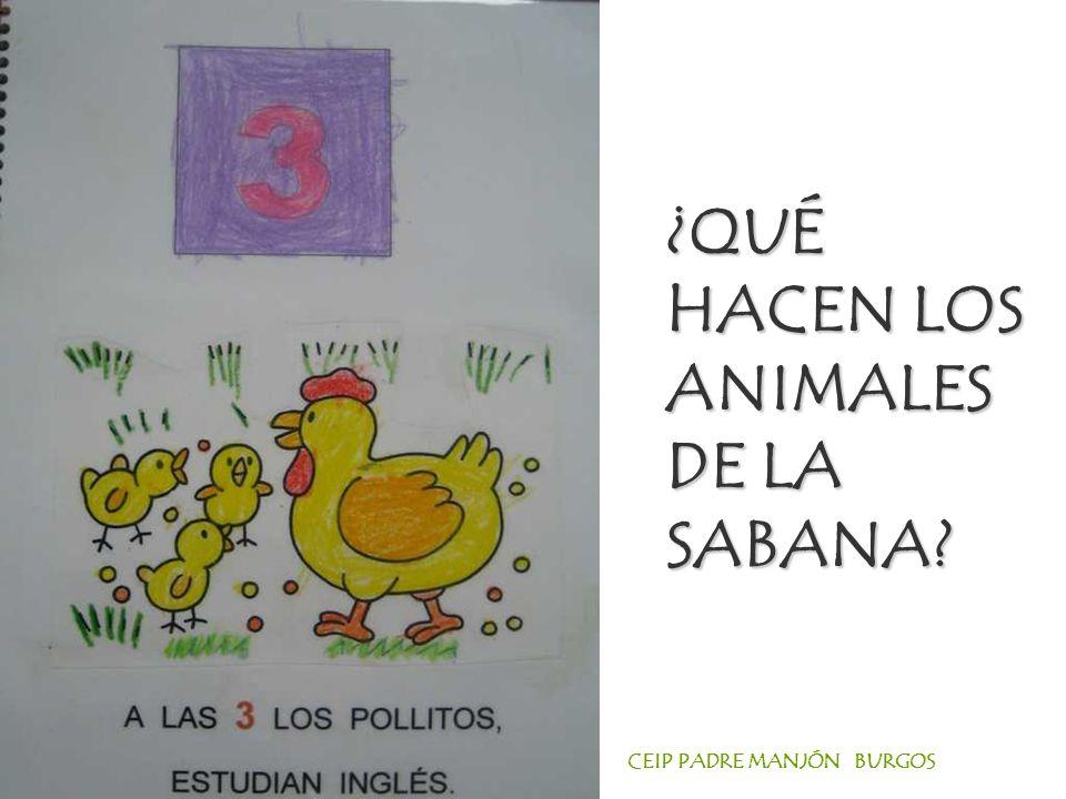 ¿QUÉ HACEN LOS ANIMALES DE LA SABANA