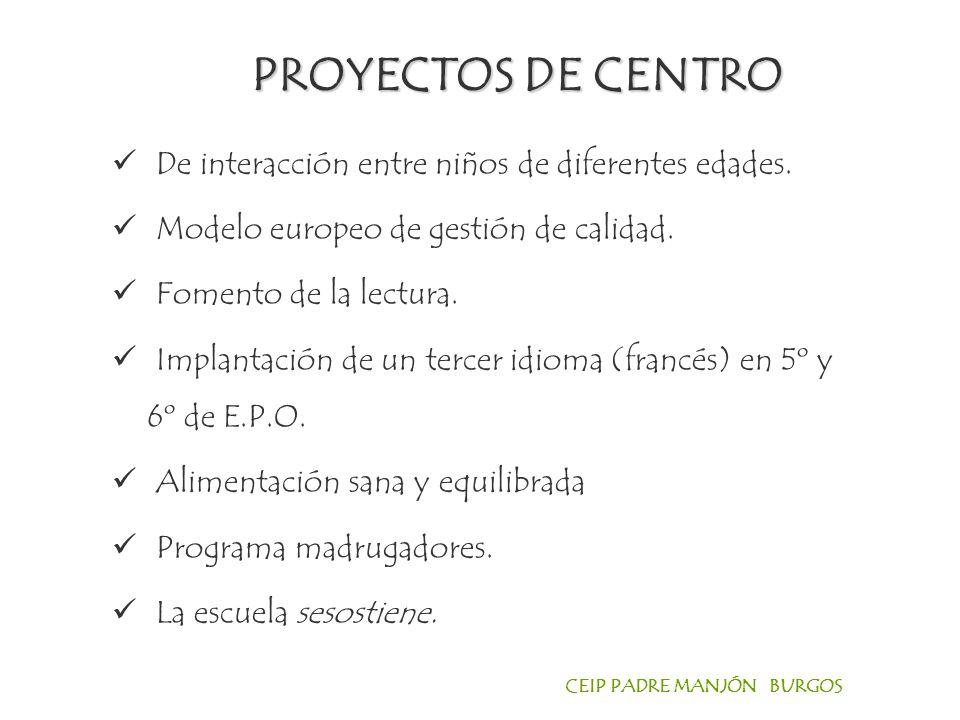 PROYECTOS DE CENTRO De interacción entre niños de diferentes edades.