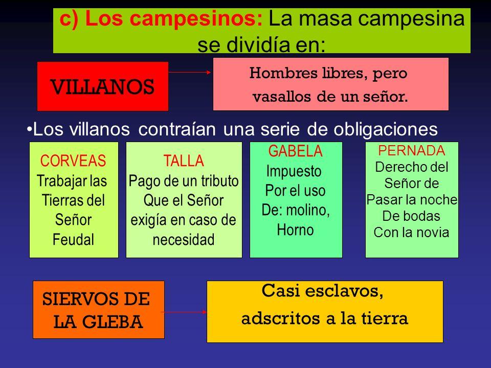 c) Los campesinos: La masa campesina se dividía en: