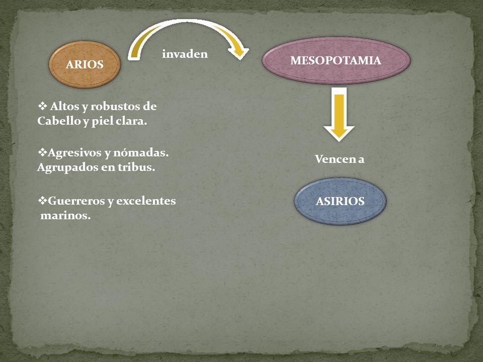 MESOPOTAMIA ARIOS. invaden. Altos y robustos de. Cabello y piel clara. Agresivos y nómadas. Agrupados en tribus.