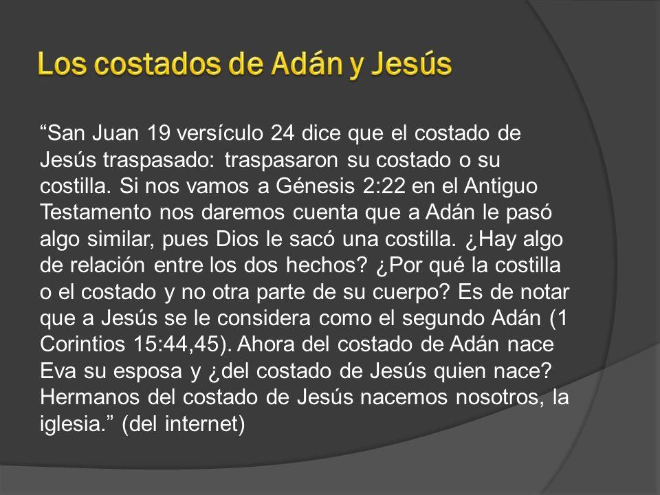 Los costados de Adán y Jesús