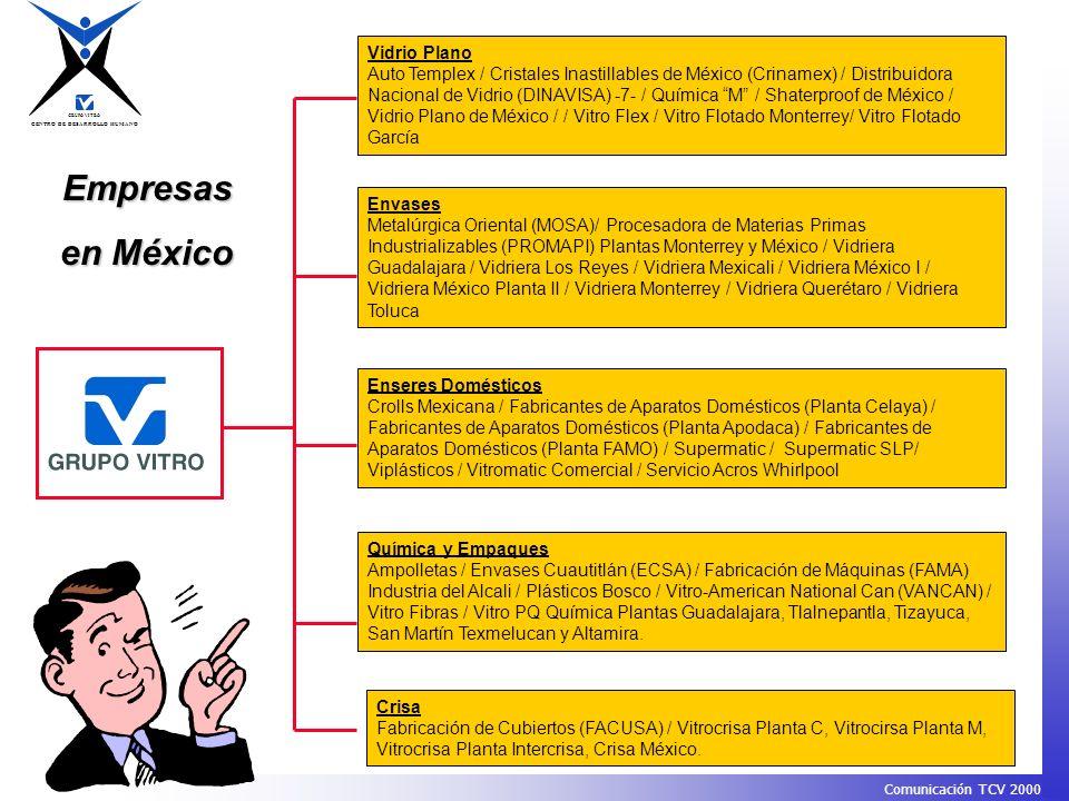 Empresas en México Vidrio Plano