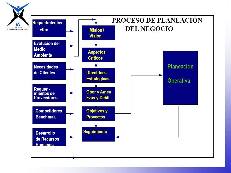 PROCESO DE PLANEACIÓN DEL NEGOCIO Planeación Operativa Requerimientos