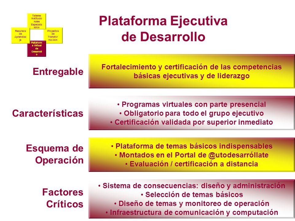 Plataforma Ejecutiva de Desarrollo