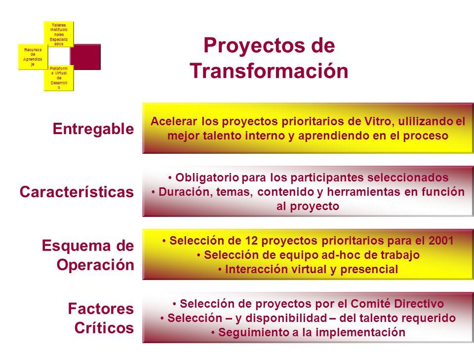 Proyectos de Transformación