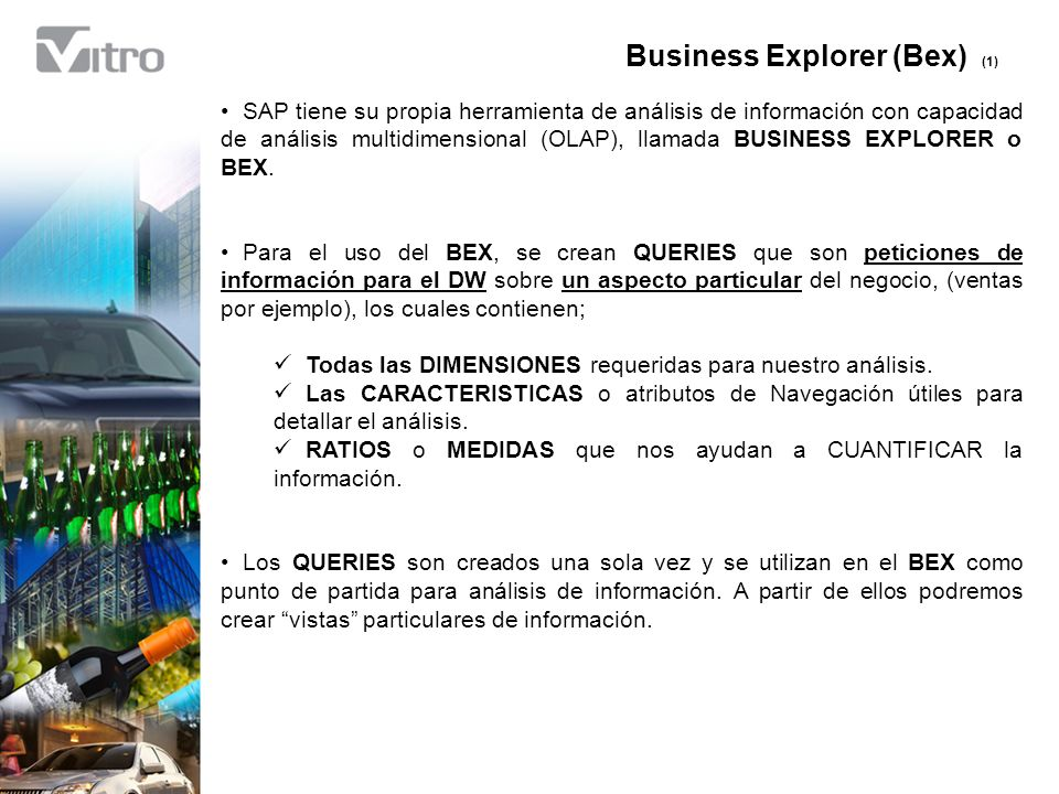 Business Explorer (Bex) (1)
