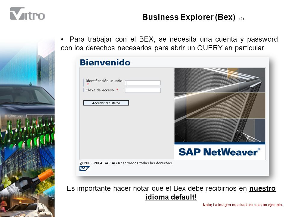 Business Explorer (Bex) (3)