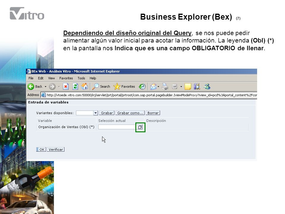 Business Explorer (Bex) (7)