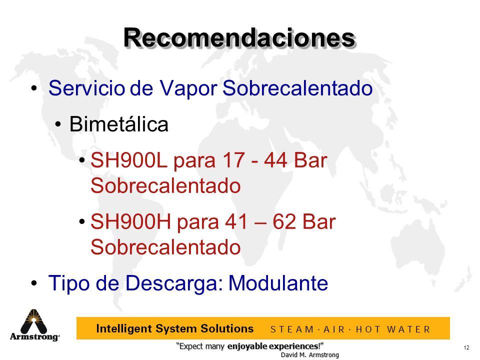 Recomendaciones Servicio de Vapor Sobrecalentado Bimetálica