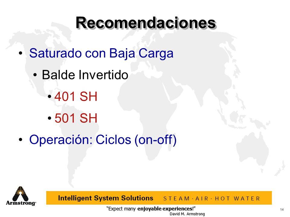 Recomendaciones Saturado con Baja Carga Balde Invertido 401 SH 501 SH
