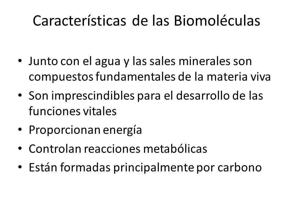 Características de las Biomoléculas