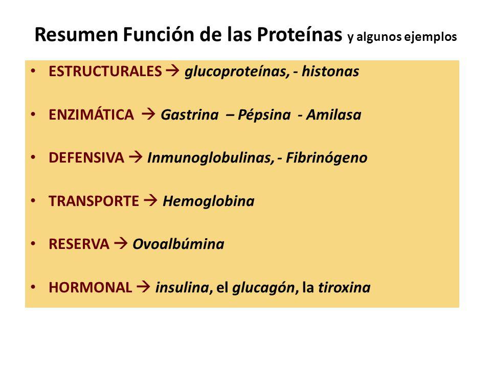 Resumen Función de las Proteínas y algunos ejemplos