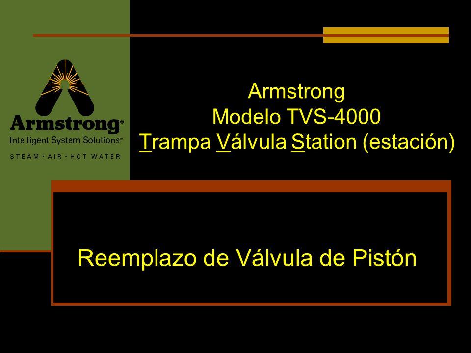 Armstrong Modelo TVS-4000 Trampa Válvula Station (estación)