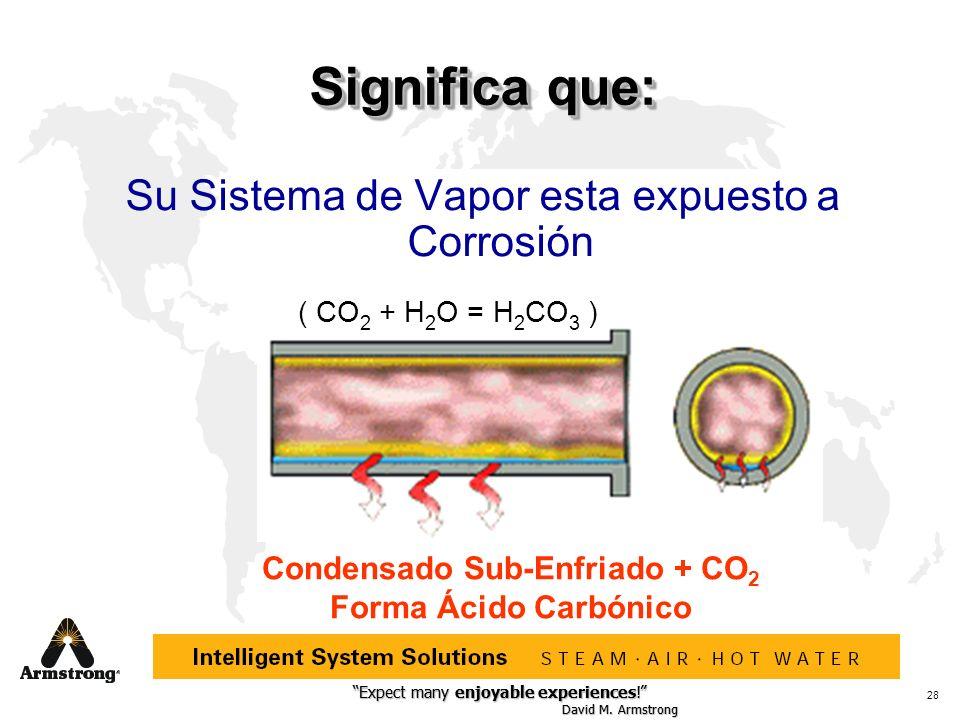 Condensado Sub-Enfriado + CO2