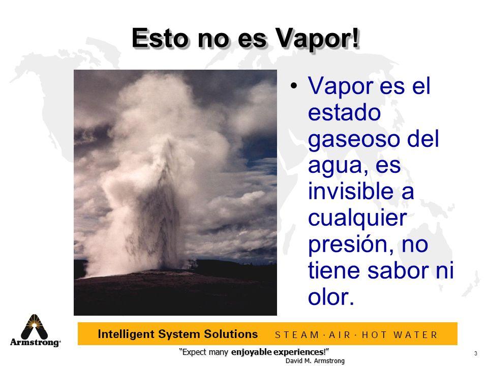 Esto no es Vapor! Vapor es el estado gaseoso del agua, es invisible a cualquier presión, no tiene sabor ni olor.