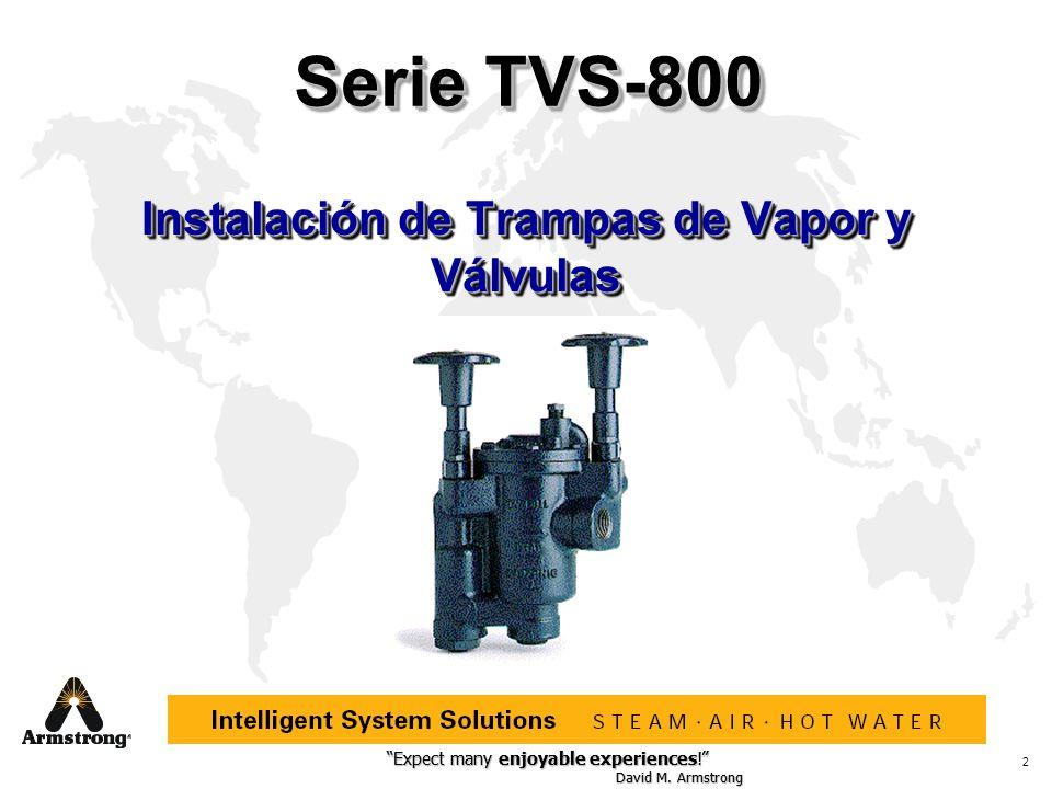 Instalación de Trampas de Vapor y Válvulas