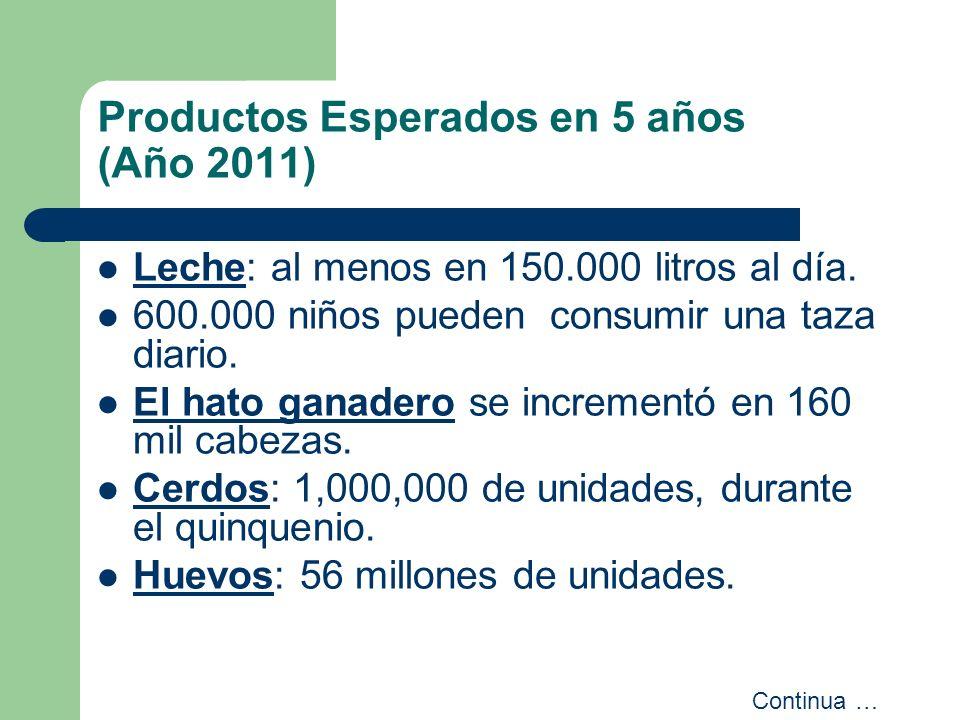 Productos Esperados en 5 años (Año 2011)