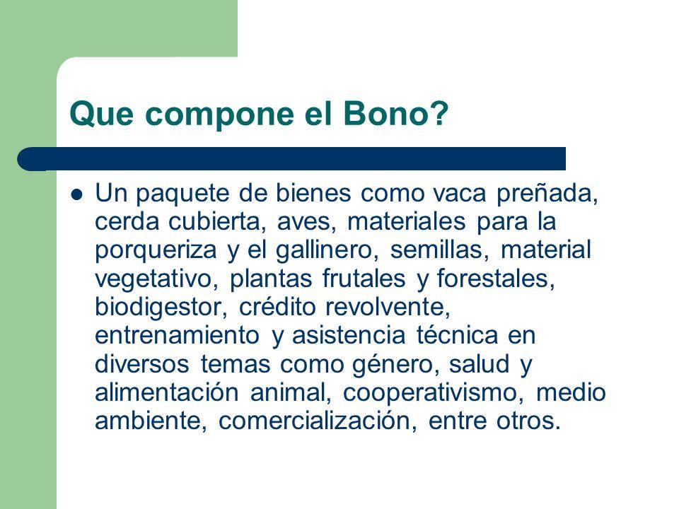 Que compone el Bono