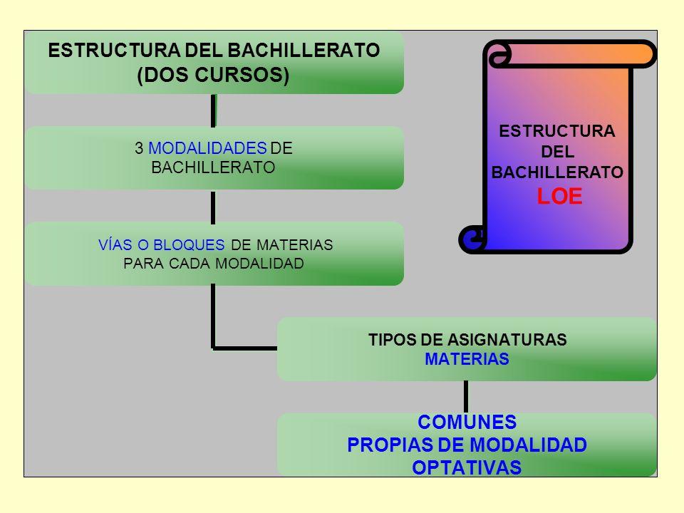 ESTRUCTURA DEL BACHILLERATO LOE