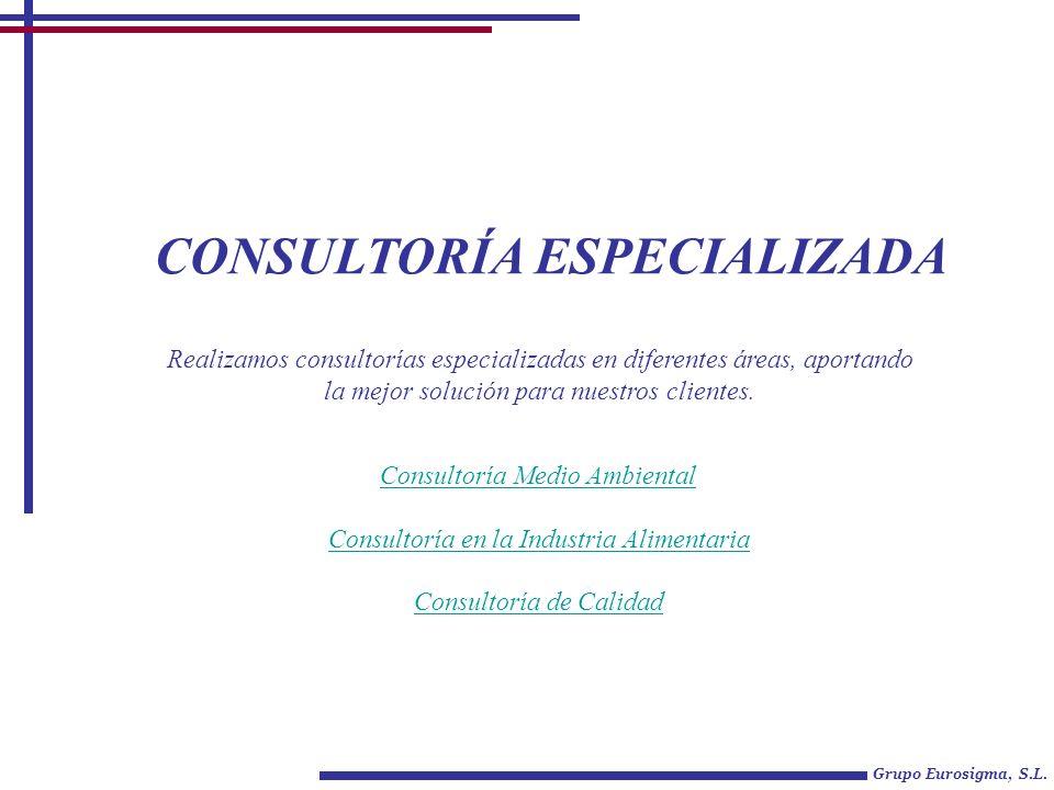 CONSULTORÍA ESPECIALIZADA