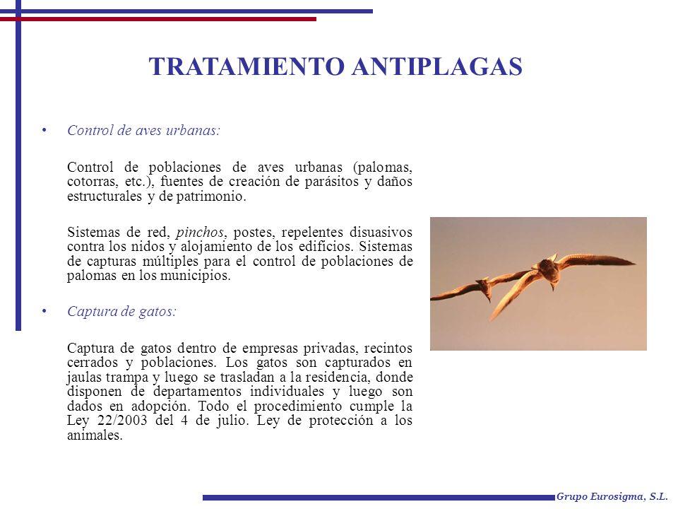 TRATAMIENTO ANTIPLAGAS