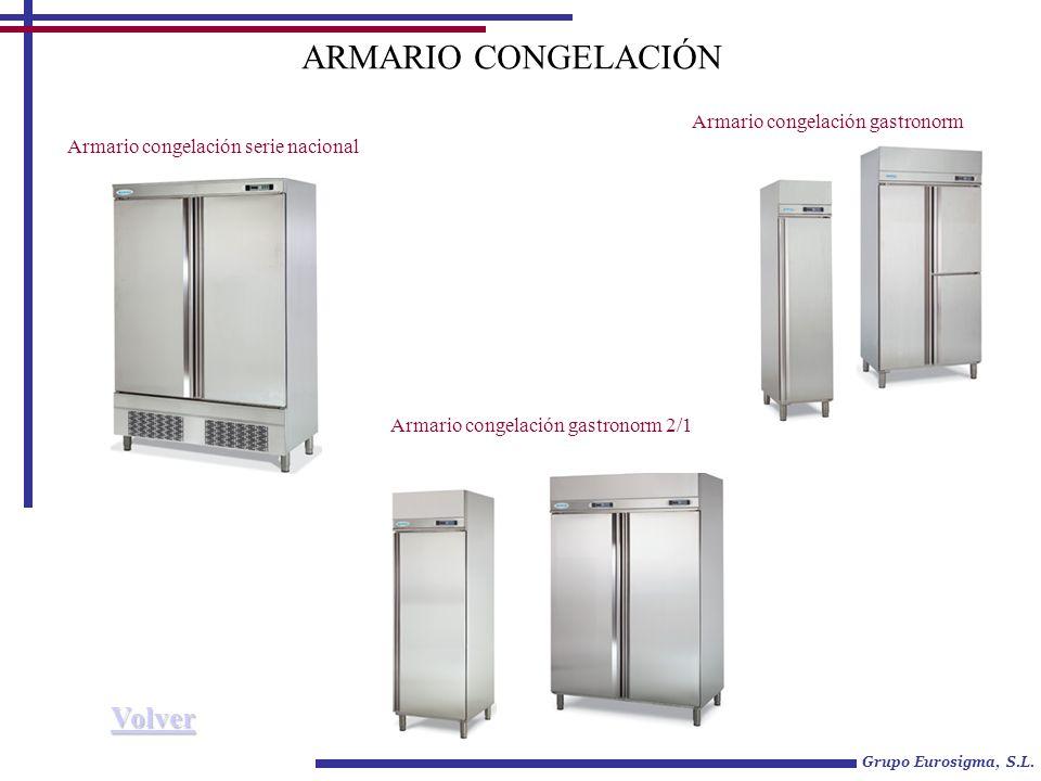 ARMARIO CONGELACIÓN Volver Armario congelación gastronorm