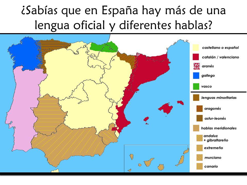 Ndice las lenguas oficiales de espa a castellano o espa ol ppt descargar - Que hay en portugal ...
