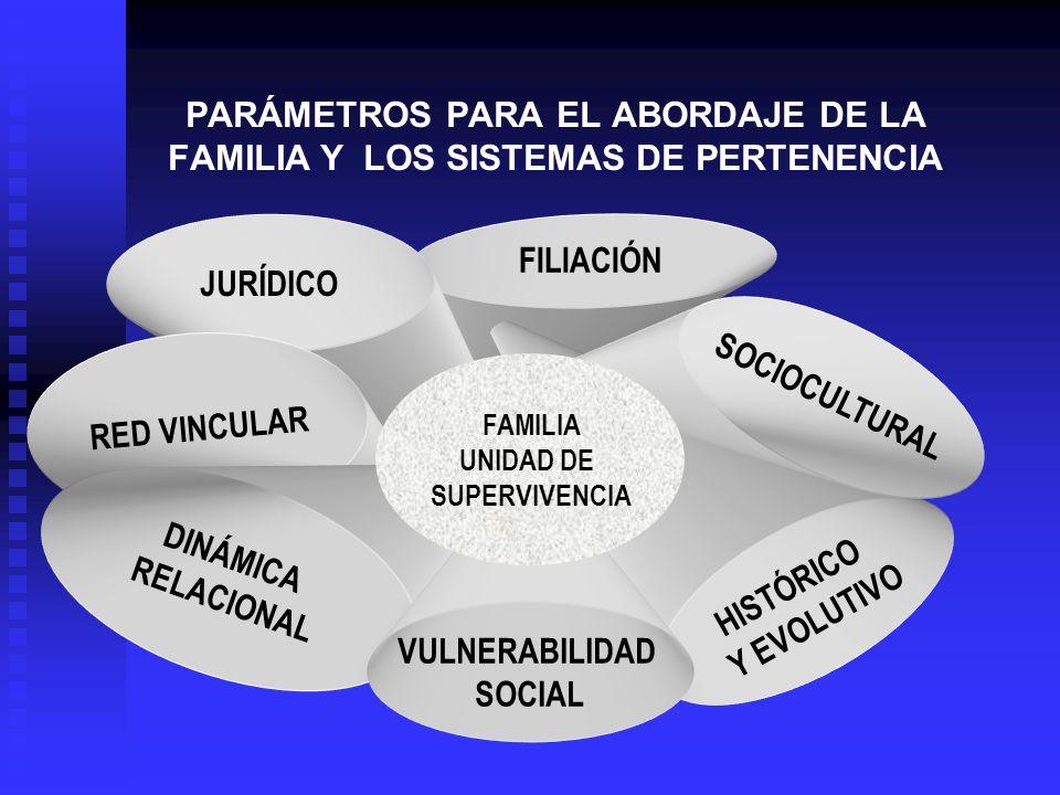 PARÁMETROS PARA EL ABORDAJE DE LA FAMILIA Y LOS SISTEMAS DE PERTENENCIA