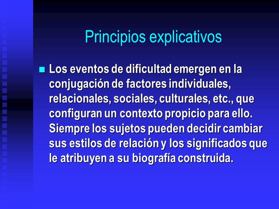 Principios explicativos