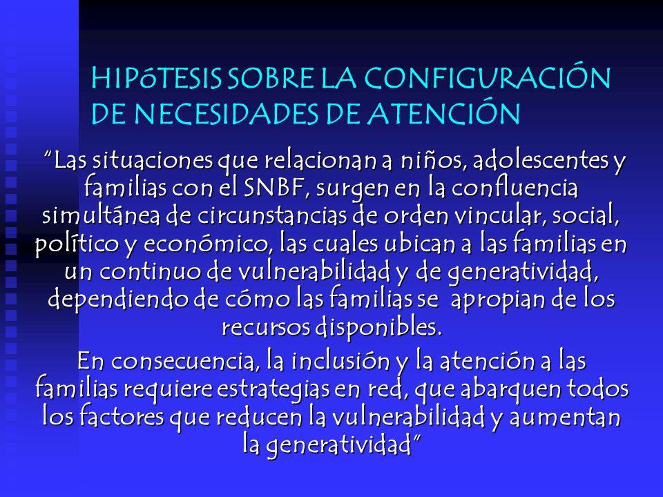 HIPóTESIS SOBRE LA CONFIGURACIÓN DE NECESIDADES DE ATENCIÓN