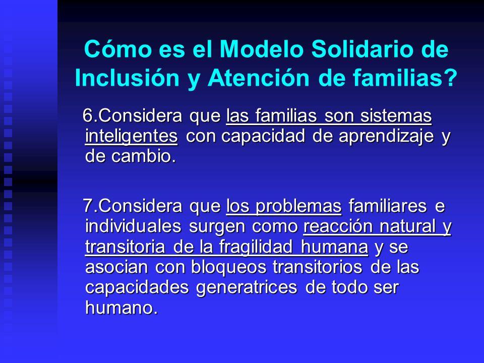 Cómo es el Modelo Solidario de Inclusión y Atención de familias