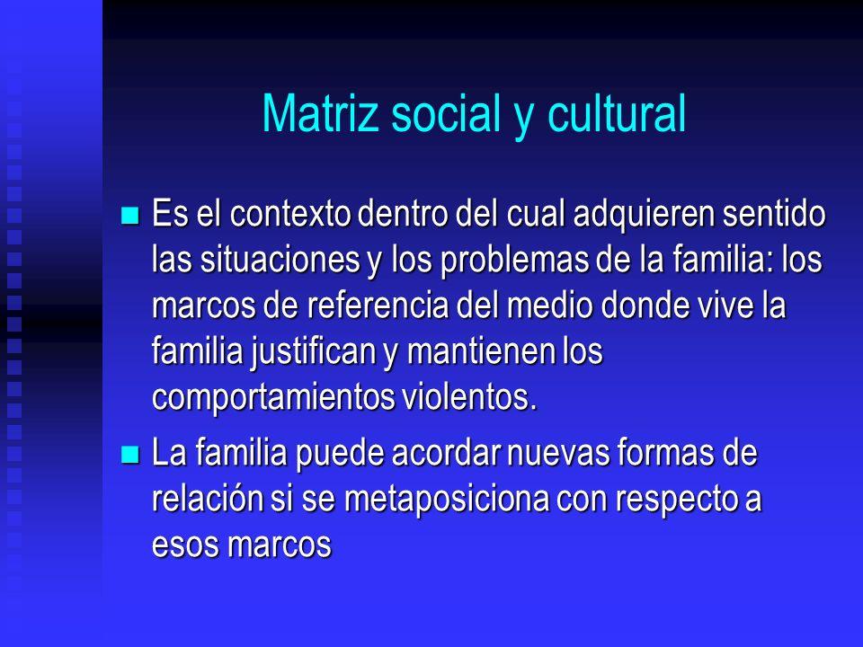 Matriz social y cultural