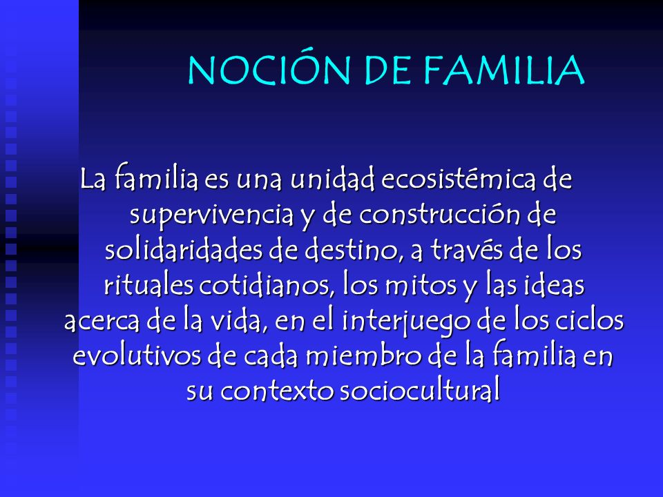 NOCIÓN DE FAMILIA