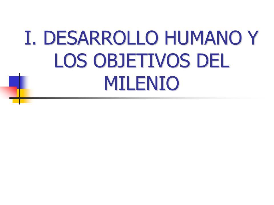 I. DESARROLLO HUMANO Y LOS OBJETIVOS DEL MILENIO
