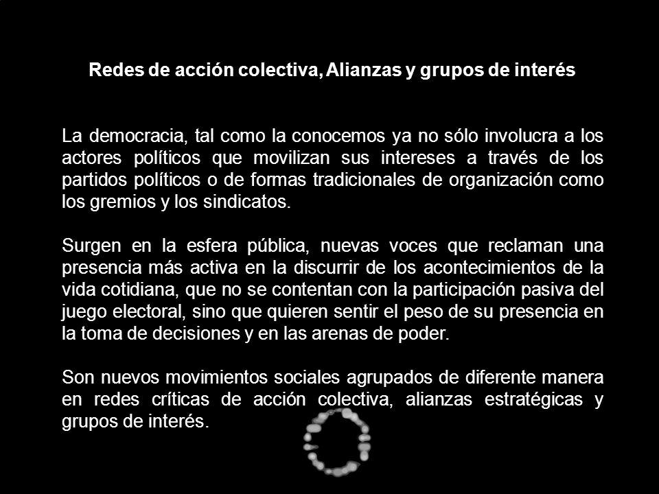 Redes de acción colectiva, Alianzas y grupos de interés