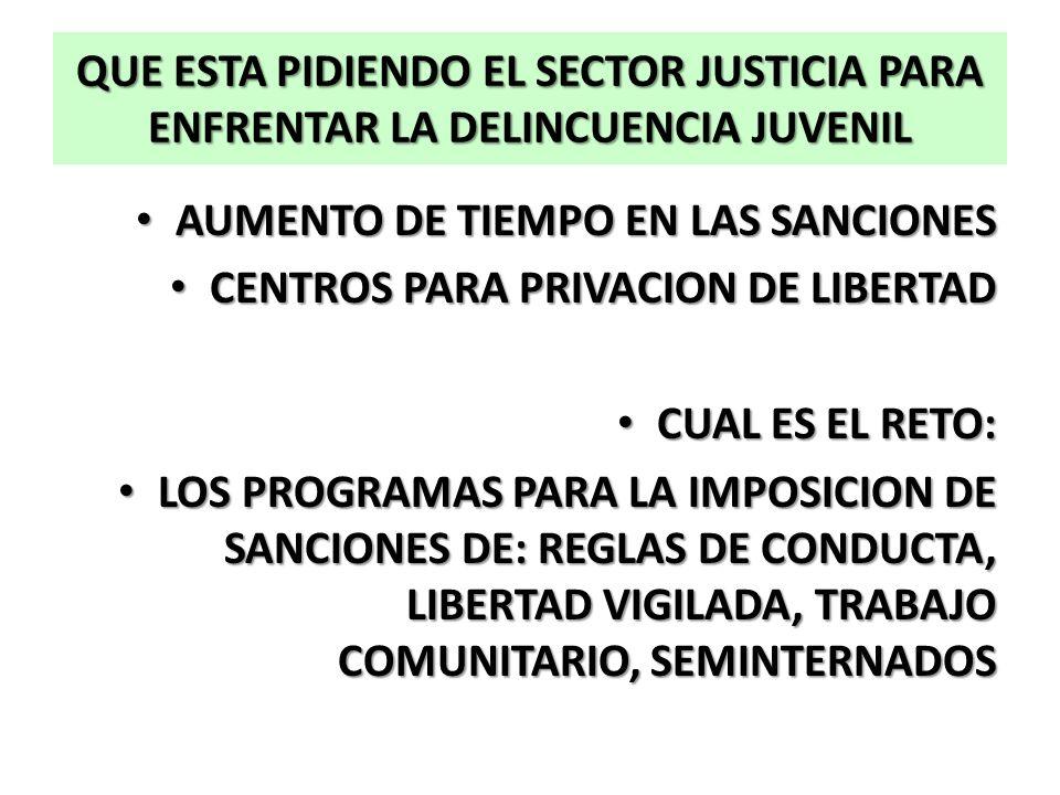 QUE ESTA PIDIENDO EL SECTOR JUSTICIA PARA ENFRENTAR LA DELINCUENCIA JUVENIL