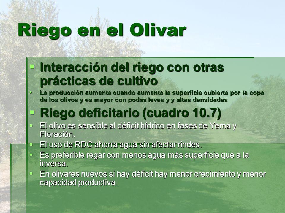 Riego en el Olivar Interacción del riego con otras prácticas de cultivo.
