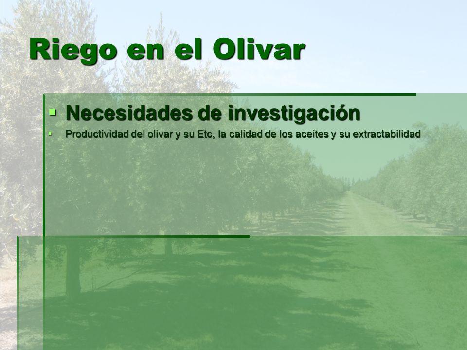Riego en el Olivar Necesidades de investigación
