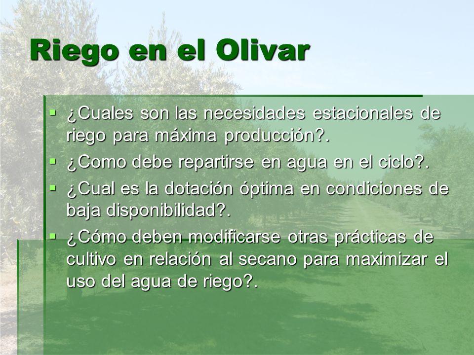 Riego en el Olivar ¿Cuales son las necesidades estacionales de riego para máxima producción . ¿Como debe repartirse en agua en el ciclo .