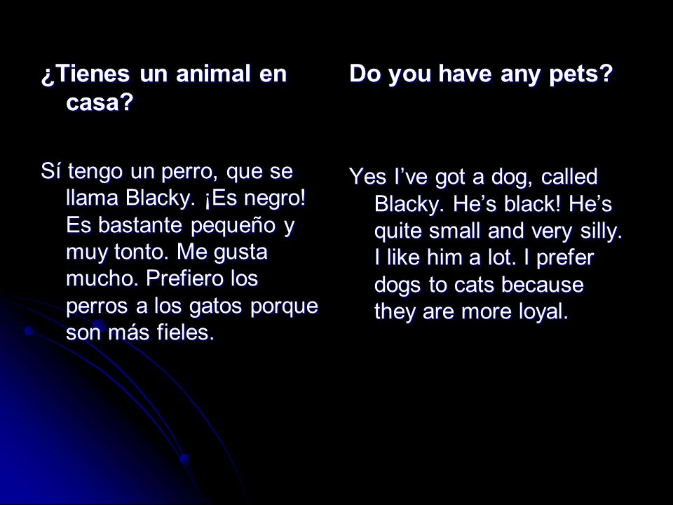 ¿Tienes un animal en casa Do you have any pets