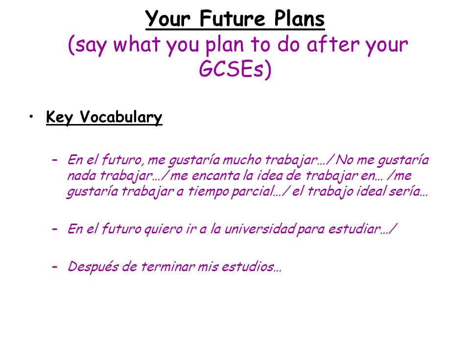 Your Future Plans (say what you plan to do after your GCSEs)