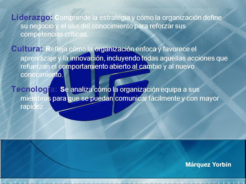 Liderazgo: Comprende la estrategia y cómo la organización define su negocio y el uso del conocimiento para reforzar sus competencias críticas.