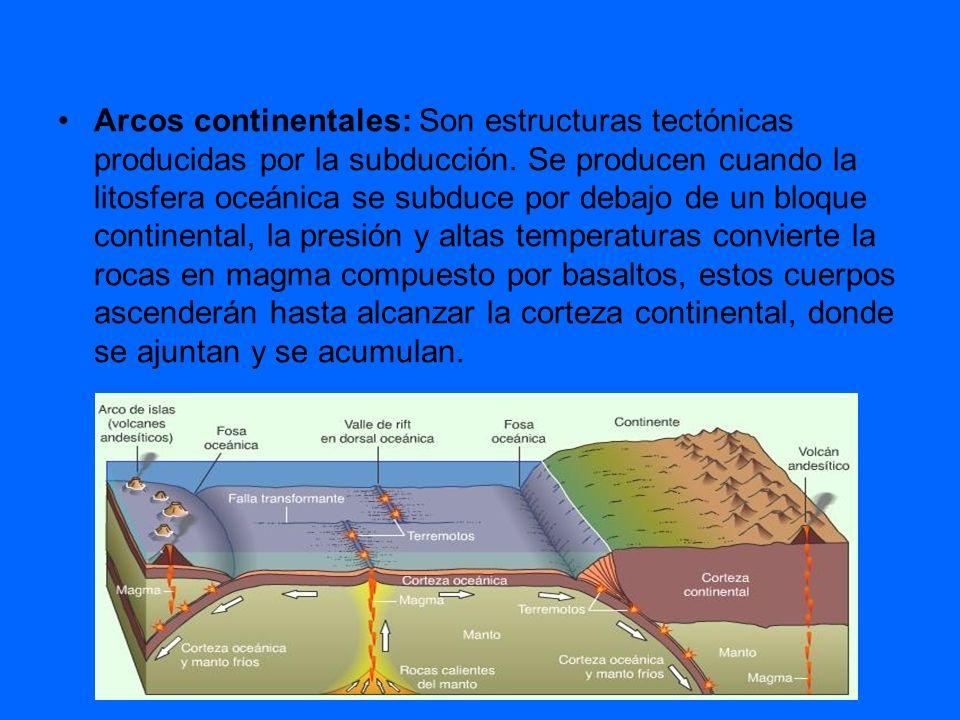 Arcos continentales: Son estructuras tectónicas producidas por la subducción.
