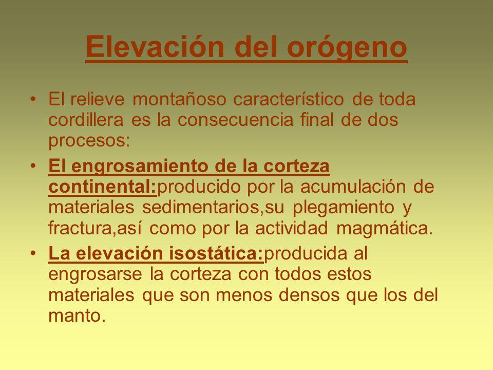 Elevación del orógeno El relieve montañoso característico de toda cordillera es la consecuencia final de dos procesos: