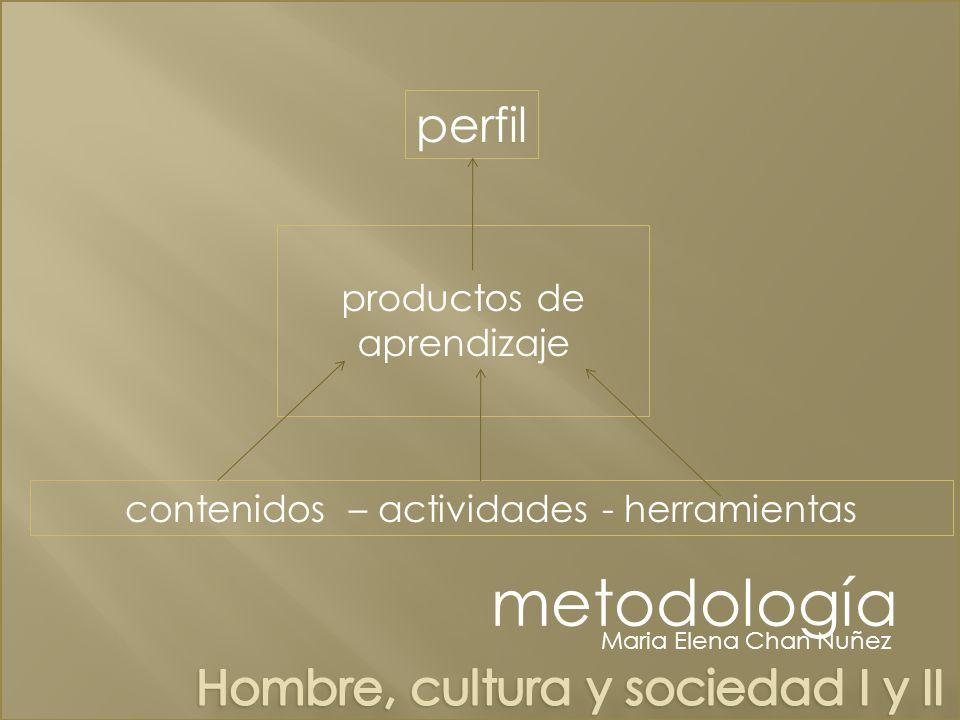 metodología perfil Hombre, cultura y sociedad I y II