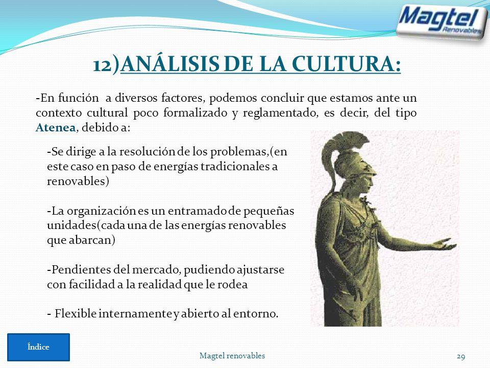 12)ANÁLISIS DE LA CULTURA: