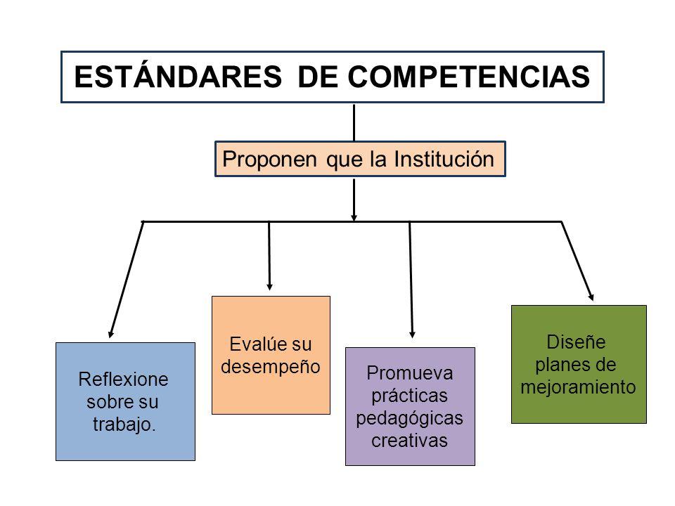 ESTÁNDARES DE COMPETENCIAS